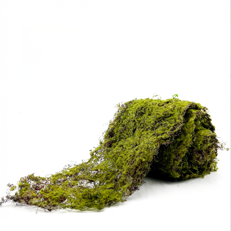 Moss, Roll