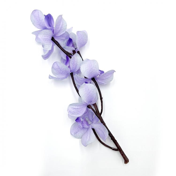 Light Purple Orchid